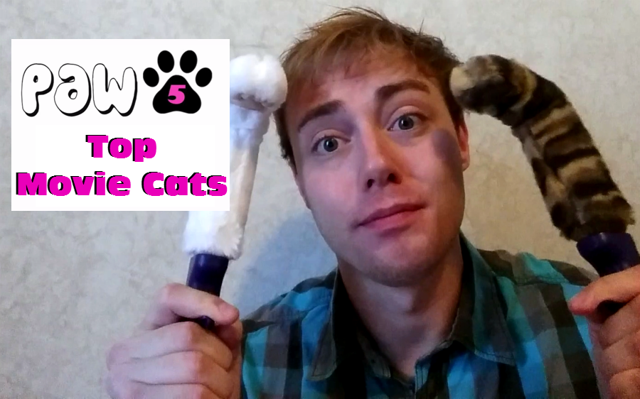 PAW5 Top Movie Cats With Help From Cat Paw